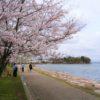 自転車で行く近江の城(1)膳所城・大津城