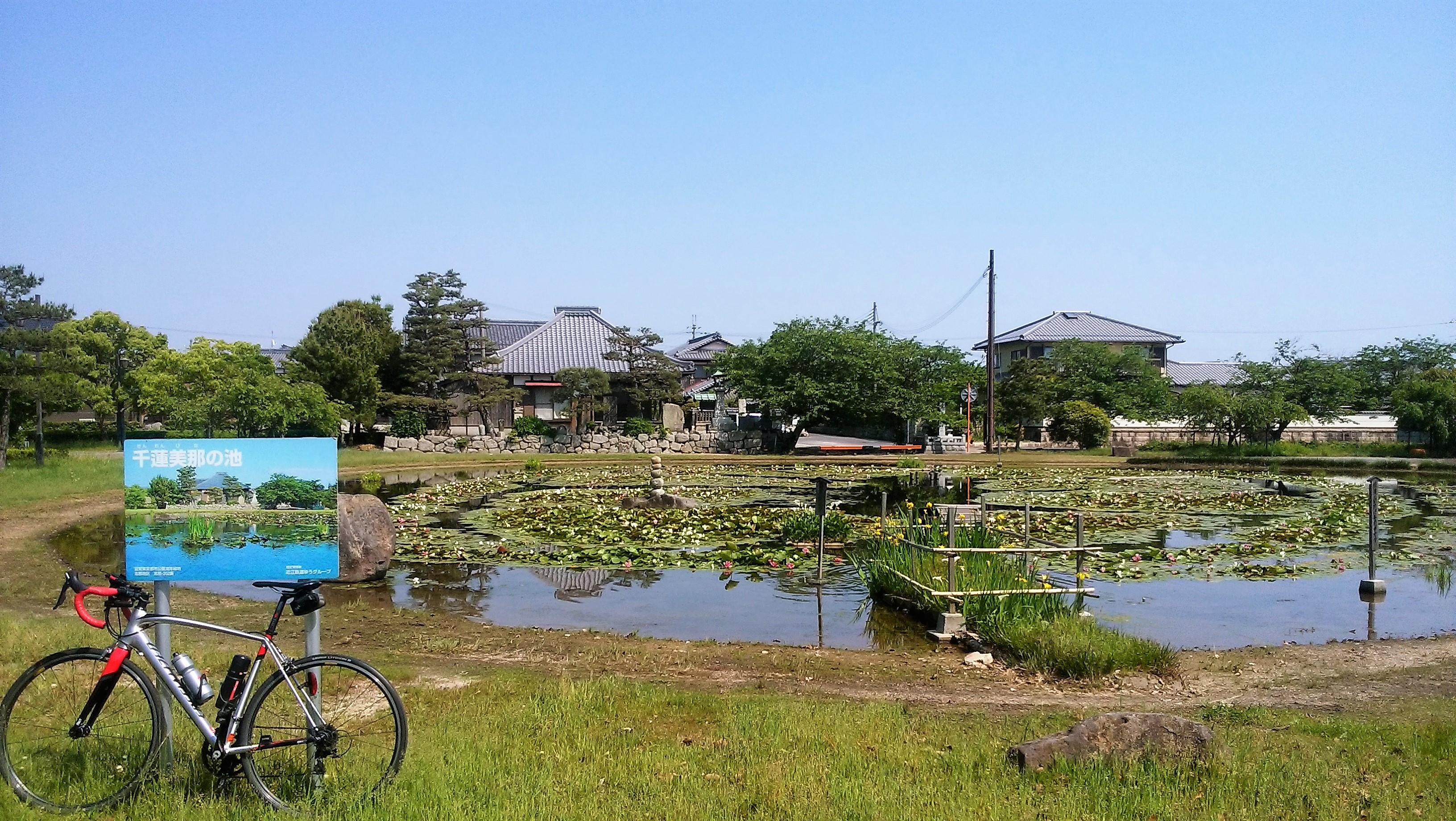 自転車でめぐる近江の旧街道~風の道、志那街道をポタリング