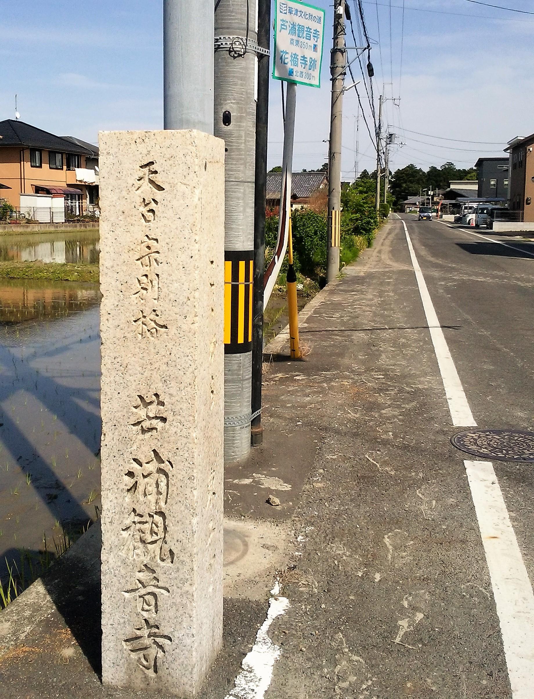 自転車で行く近江の城(番外編)「芦浦観音寺」春の一般公開!
