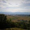 自転車で行く近江の城(4)山崎山城