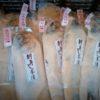 「守山鮒寿司の会」で鮒ずし食べ比べ体験!