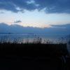 奥琵琶湖へお花見フォトライドに行ってきた!