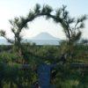 シコイチ(四国一周サイクリング)チャレンジ:最終日